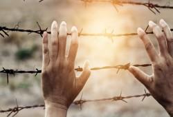 إضراب حرائر سجن القناطر وتواصل الإخفاء القسري.. أبرز جرائم العسكر اليوم