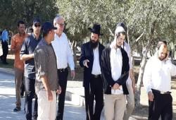 فلسطين.. اعتقال أسير محرر واقتحام المسجد الأقصى