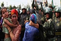 آسيا عبدالله: جرائم الصين بحق الإيجور أشبه بالهولوكوست