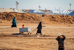 وفاة أكثر من 500 شخص معظمهم أطفال بمخيم الهول بسوريا في 2019