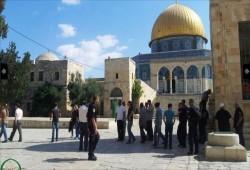 الاحتلال يستهدف مرصدًا للمقاومة بغزة وعشرات الصهاينة يقتحمون الأقصى