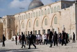 163 صهيونيًّا يدنّسون باحات المسجد الأقصى