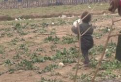 رغم تعثرها لمرات.. طفلة سورية تساعد والدتها لعبور الحدود اليونانية