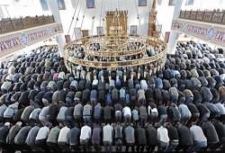 871 اعتداء على مسلمي ألمانيا في العام 2019
