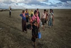 """وقف """"الديانة"""" التركي يطلق حملة لإغاثة مسلمي الروهينجيا من وباء """"كورونا"""""""