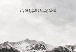 خواطر رمضانية (15): كيف تدرك شيئًا لم تطلبه؟!