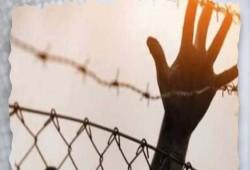 """استشهاد المعتقل """"تامر عمارة"""" بسجن استقبال طرة جراء الإهمال الطبي"""