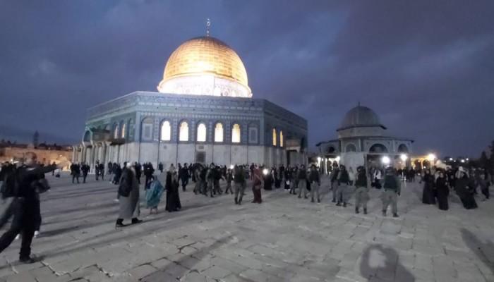 فلسطين المحتلة.. اقتحام الأقصى واعتقالات وتجريف أراضٍ