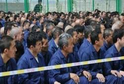 """""""الإيجور"""" يتقدمون بشكوى لـ""""الجنائية الدولية"""" ضد الحكومة الصينية"""