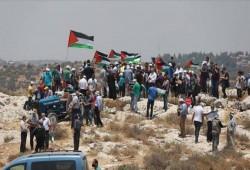 فلسطين المحتلة.. مظاهرة ضد الاستيطان الصهيوني وخطة الضم
