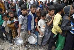 مسئول أممي: ملايين اليمنيين على حافة المجاعة