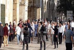 فلسطين| اعتقالات بالضفة ودعوات للرباط في الأقصى