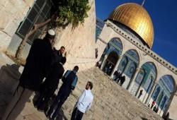 فلسطين المحتلة.. اقتحام الأقصى واعتقالات بالضفة والاعتداء على مسن