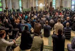 خبير استراتيجيات: ثلاثة مستويات للتعامل مع الخطر الوجودي على الأقلية المسلمة في أوروبا