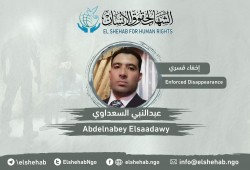 توثيق اعتقال مواطن وإخفاء آخر قسريا بالبحيرة