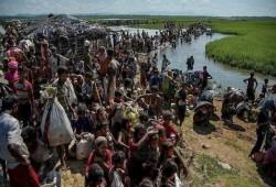 بنجلاديش.. منظمات المجتمع المدني تدعو لتحسين تعليم الروهينجا