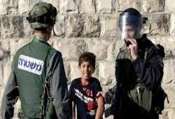 """""""الجنائية الدولية"""" تبدأ التحقيق بجرائم الصهاينة في الأراضي الفلسطينية"""
