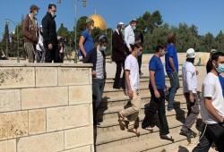 لليوم الثالث.. مئات الصهاينة يقتحمون المسجد الأقصى