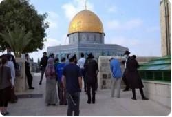 """""""علماء المسلمين"""" يندد باقتحام مئات الصهاينة باحات المسجد الأقصى"""