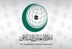 """""""التعاون الإسلامي"""": تحرير قره باغ نصر للدول الإسلامية كافة"""