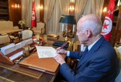 استياء مصري تونسي من زيارة قيس سعيّد لقائد الانقلاب