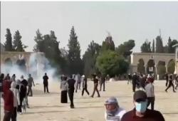 مئات الإصابات جراء اعتداء قوات الاحتلال على المرابطين بالأقصى