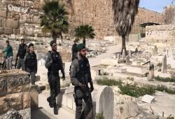 مستوطنون يقتحمون مقبرة باب الرحمة المحاذية للمسجد الأقصى