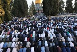40 ألفًا يؤدّون الجمعة بالأقصى.. والشيخ عكرمة صبري: مسيرة الأعلام فشل صهيوني
