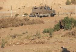 قوات الاحتلال تستهدف المزارعين شرق خان يونس