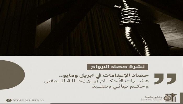 87 حالة.. حصاد أحكام الإعدام والتنفيذ والإحالة للمفتي خلال إبريل ومايو