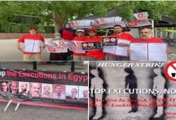 الشبكة المصرية تعلن دعمها الكامل لإضراب النشطاء حول العالم