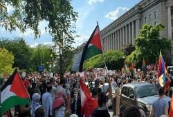 اليوم.. مظاهرة بنيويورك للمطالبة بإغلاق مكاتب أمريكية داعمة للاستيطان