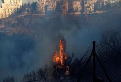 6 آلاف حريق بمحيط مستوطنات الضفة منذ بداية 2021