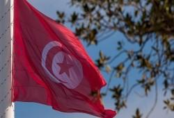 تونس.. حزبان يرفضان تعليق العمل بالدستور